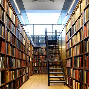 Библиотеки Рассказово